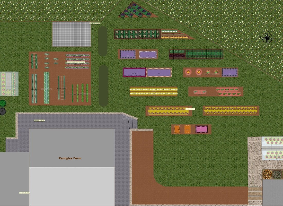 Planning A Large Vegetable Garden