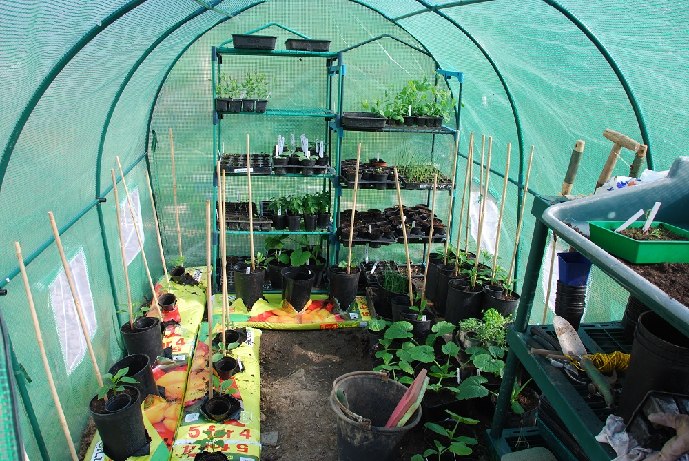 Poly-Tunnel Nursery